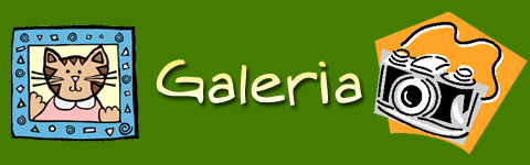 banner_galeria